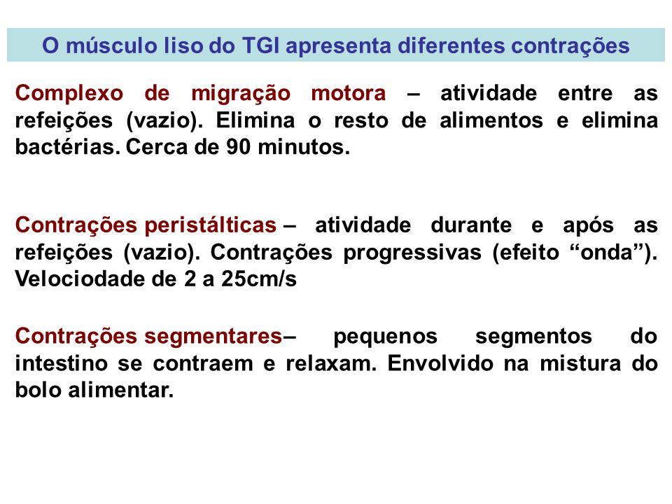 O músculo liso do TGI apresenta diferentes contrações Complexo de migração motora – atividade entre as refeições (vazio).