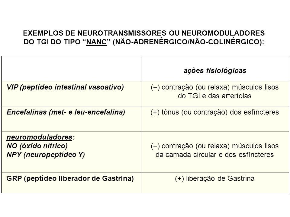 ações fisiológicas VIP (peptídeo intestinal vasoativo) ( ) contração (ou relaxa) músculos lisos do TGI e das arteríolas Encefalinas (met- e leu-encefalina)(+) tônus (ou contração) dos esfíncteres neuromoduladores: NO (óxido nítrico) NPY (neuropeptídeo Y) ( ) contração (ou relaxa) músculos lisos da camada circular e dos esfíncteres GRP (peptídeo liberador de Gastrina)(+) liberação de Gastrina EXEMPLOS DE NEUROTRANSMISSORES OU NEUROMODULADORES DO TGI DO TIPO NANC (NÃO-ADRENÉRGICO/NÃO-COLINÉRGICO):