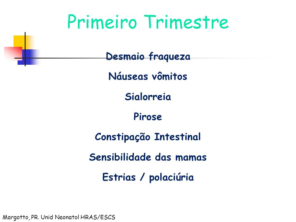 Primeiro Trimestre Desmaio fraqueza Náuseas vômitos Sialorreia Pirose Constipação Intestinal Sensibilidade das mamas Estrias / polaciúria Margotto, PR