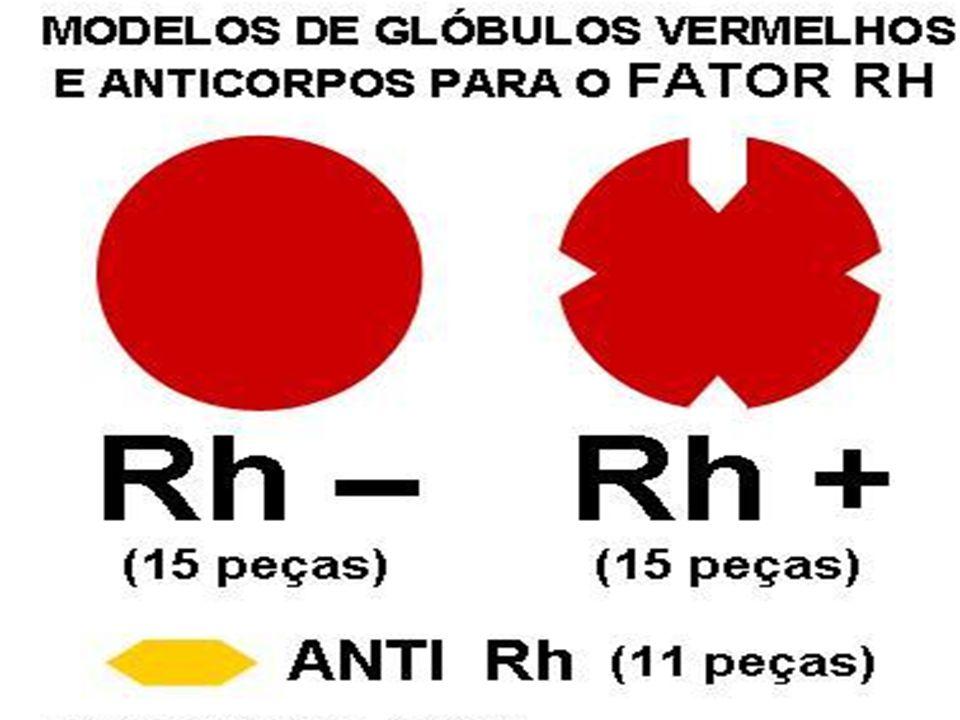 Síndromes Hemorrágicas Placenta Prévia Margotto, PR. Unid Neonatol HRAS/ESCS
