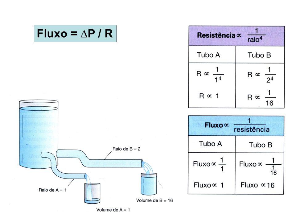 Fluxo = P / R
