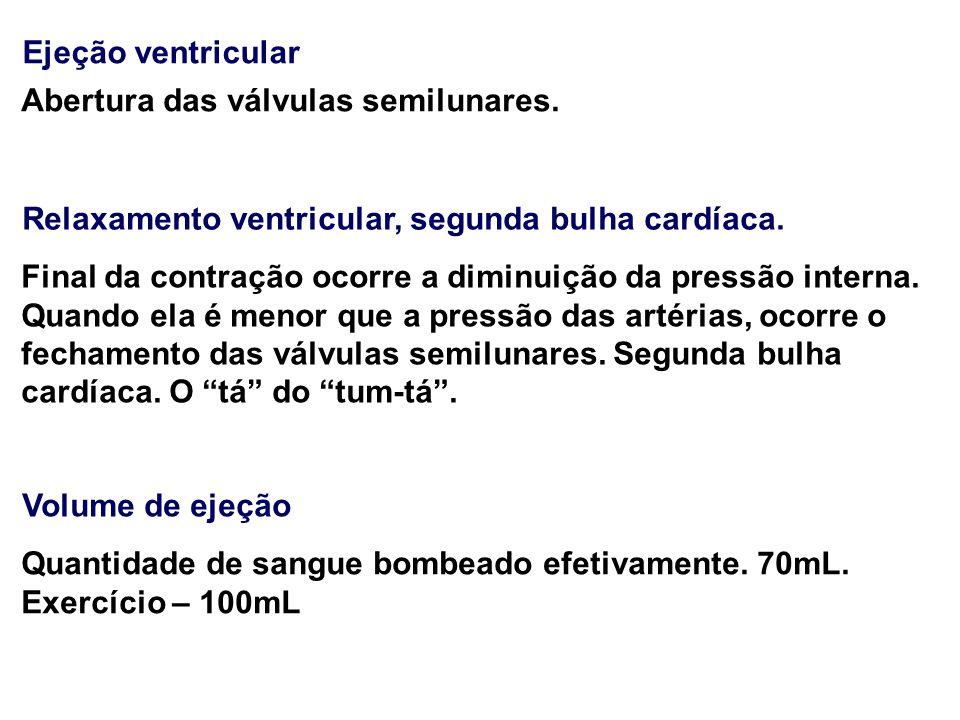 Relaxamento ventricular, segunda bulha cardíaca.
