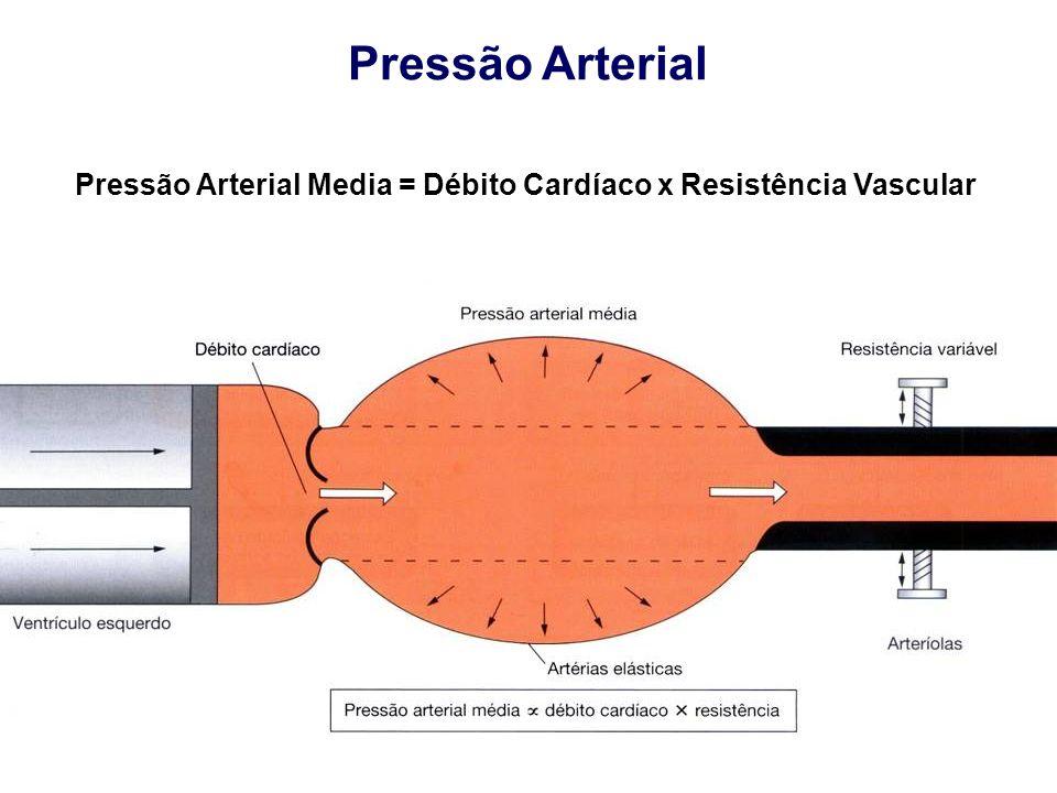 Pressão Arterial Pressão Arterial Media = Débito Cardíaco x Resistência Vascular