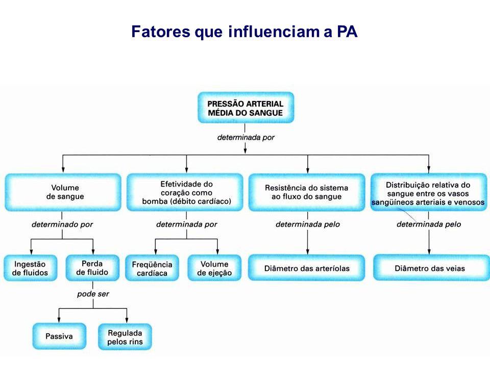 Fatores que influenciam a PA
