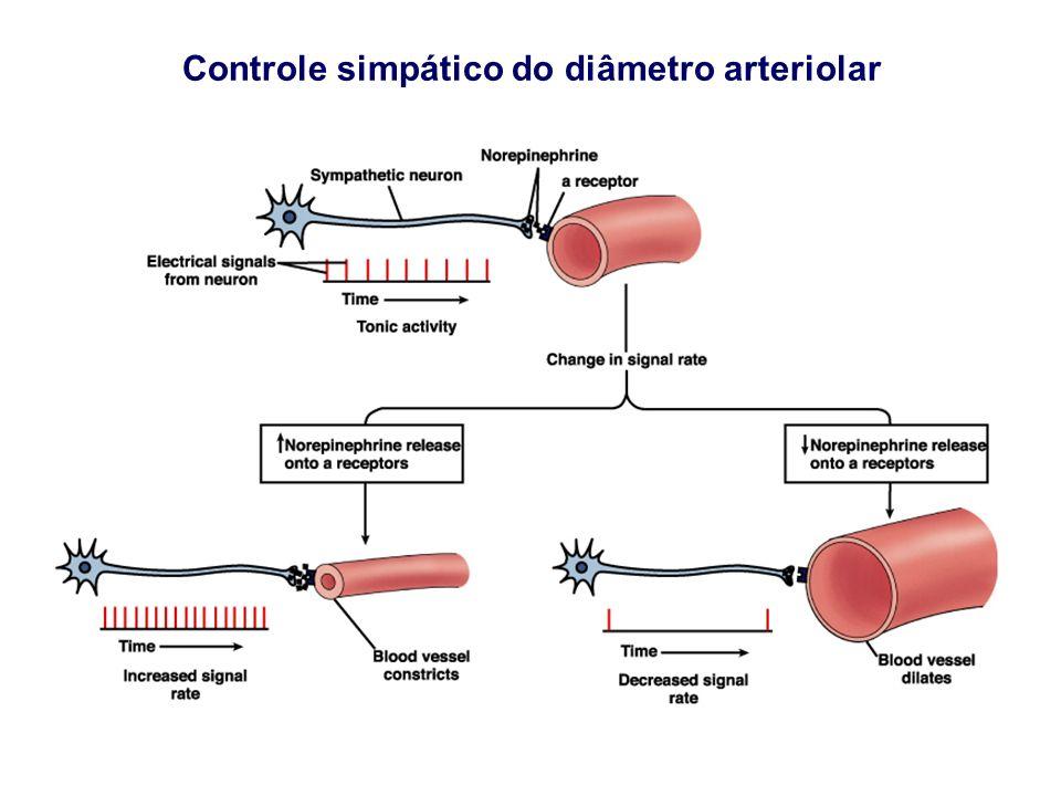 Controle simpático do diâmetro arteriolar