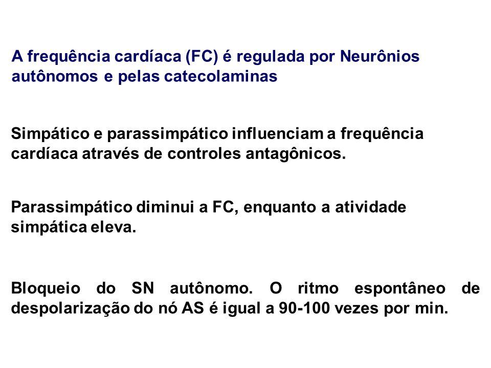 A frequência cardíaca (FC) é regulada por Neurônios autônomos e pelas catecolaminas Simpático e parassimpático influenciam a frequência cardíaca através de controles antagônicos.