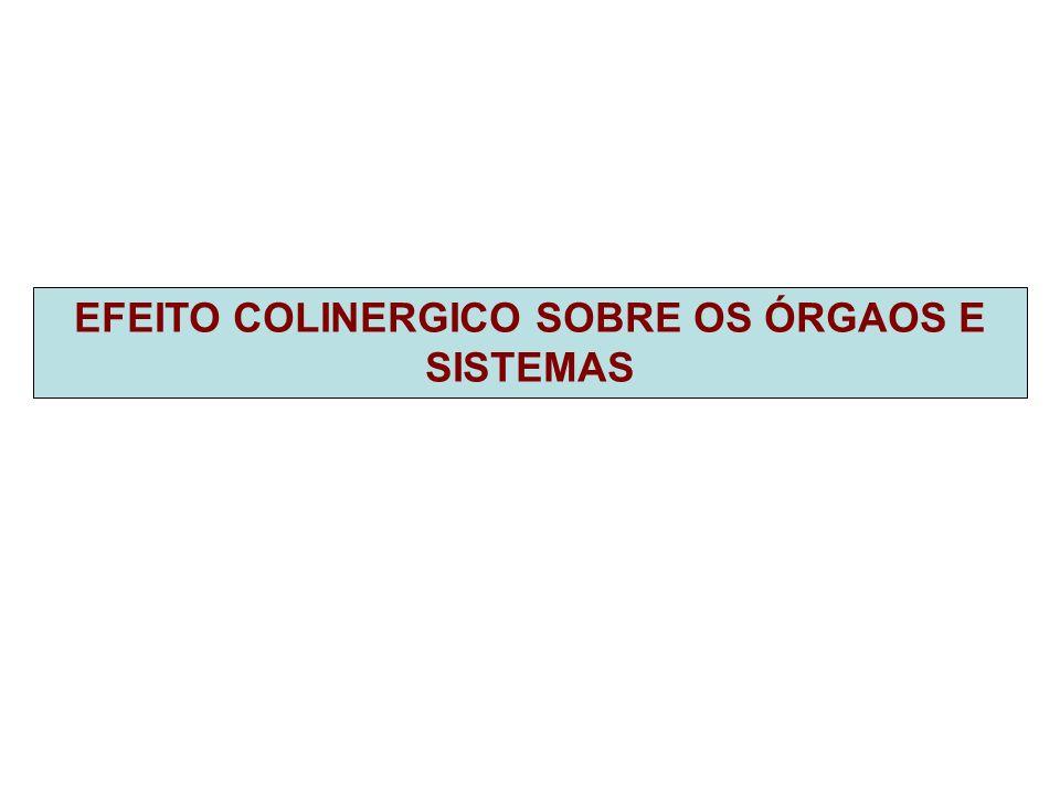 EFEITO COLINERGICO SOBRE OS ÓRGAOS E SISTEMAS