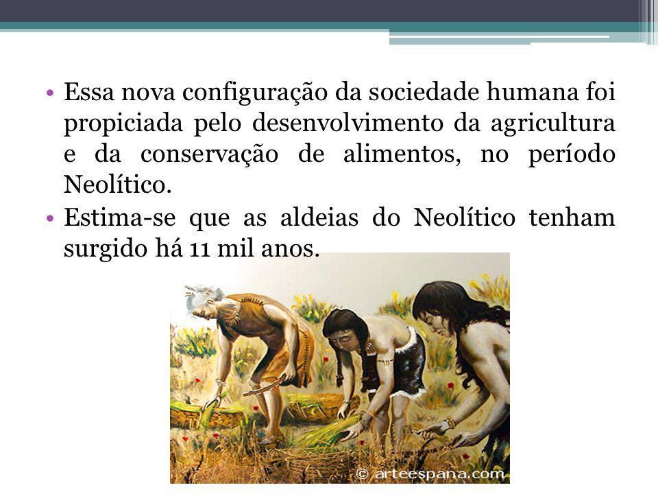 Essa nova configuração da sociedade humana foi propiciada pelo desenvolvimento da agricultura e da conservação de alimentos, no período Neolítico. Est
