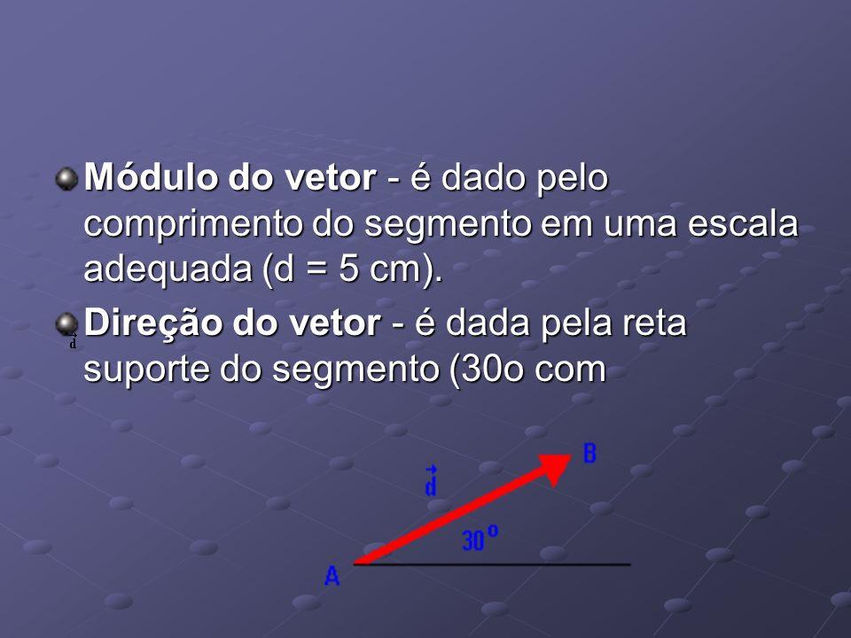 Módulo do vetor - é dado pelo comprimento do segmento em uma escala adequada (d = 5 cm). Direção do vetor - é dada pela reta suporte do segmento (30o
