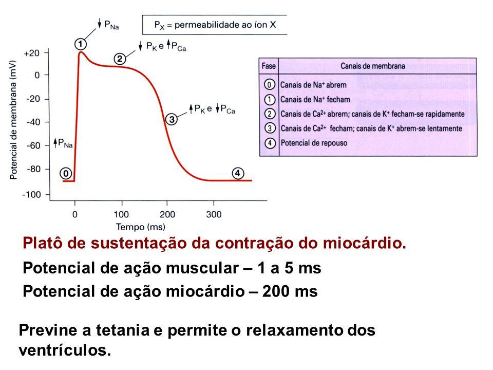 Platô de sustentação da contração do miocárdio. Potencial de ação muscular – 1 a 5 ms Potencial de ação miocárdio – 200 ms Previne a tetania e permite