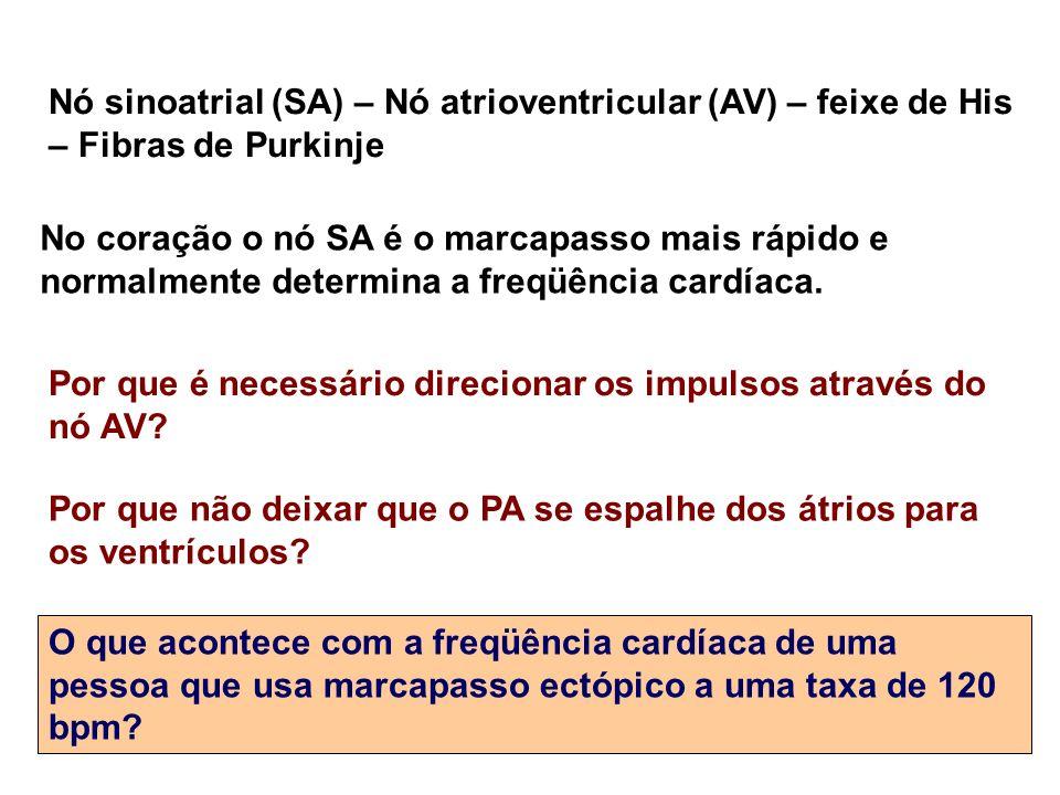 Nó sinoatrial (SA) – Nó atrioventricular (AV) – feixe de His – Fibras de Purkinje Por que é necessário direcionar os impulsos através do nó AV? Por qu