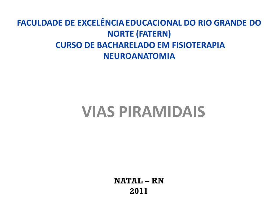 FACULDADE DE EXCELÊNCIA EDUCACIONAL DO RIO GRANDE DO NORTE (FATERN) CURSO DE BACHARELADO EM FISIOTERAPIA NEUROANATOMIA VIAS PIRAMIDAIS NATAL – RN 2011
