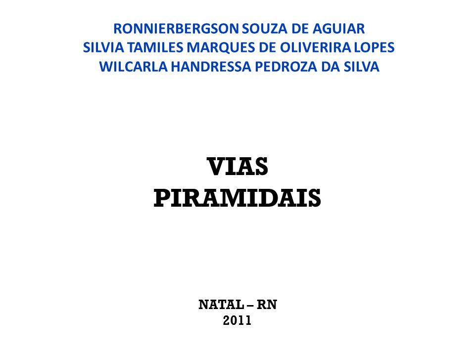 RONNIERBERGSON SOUZA DE AGUIAR SILVIA TAMILES MARQUES DE OLIVERIRA LOPES WILCARLA HANDRESSA PEDROZA DA SILVA VIAS PIRAMIDAIS NATAL – RN 2011