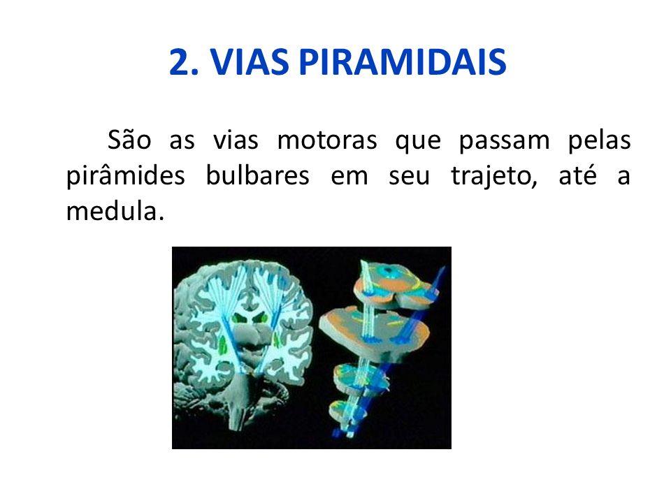 2. VIAS PIRAMIDAIS São as vias motoras que passam pelas pirâmides bulbares em seu trajeto, até a medula.