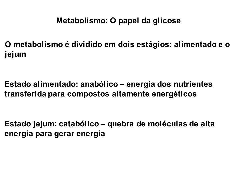 Metabolismo: O papel da glicose O metabolismo é dividido em dois estágios: alimentado e o jejum Estado alimentado: anabólico – energia dos nutrientes