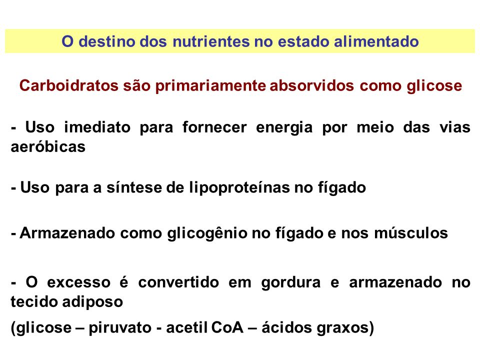 Proteínas são primariamente absorvidas como aminoácidos - A maioria dos AA vai para os tecidos e participa da síntese protéica - Se necessários para energia, os AA são convertidos no fígado em intermediários para o metabolismo aeróbico - O excesso é convertido em gordura e armazenado no tecido adiposo O destino dos nutrientes no estado alimentado (AA – acetil CoA – ácidos graxos)