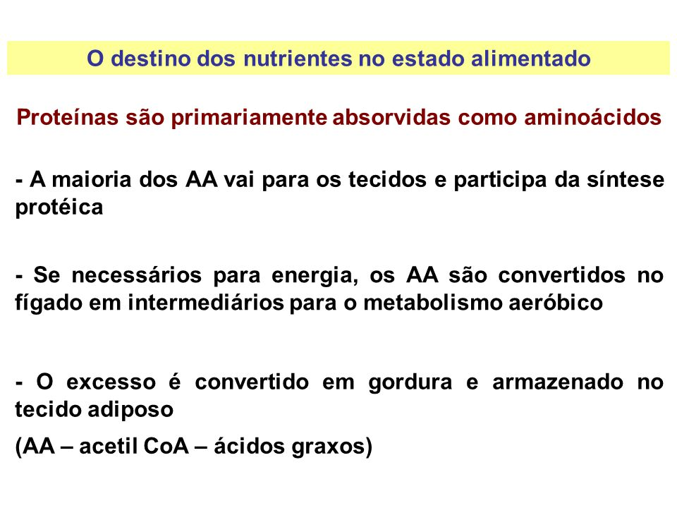 As gorduras são primariamente absorvidas como triglicerídeos - As gorduras são armazenadas primariamente no fígado e no tecido adiposo O destino dos nutrientes no estado alimentado