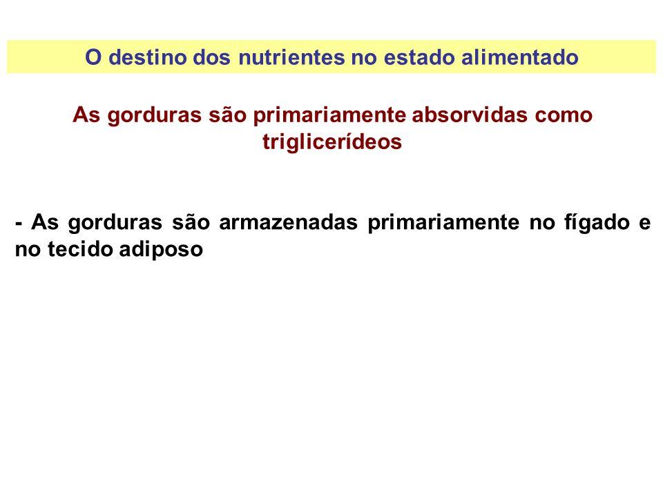 As gorduras são primariamente absorvidas como triglicerídeos - As gorduras são armazenadas primariamente no fígado e no tecido adiposo O destino dos n