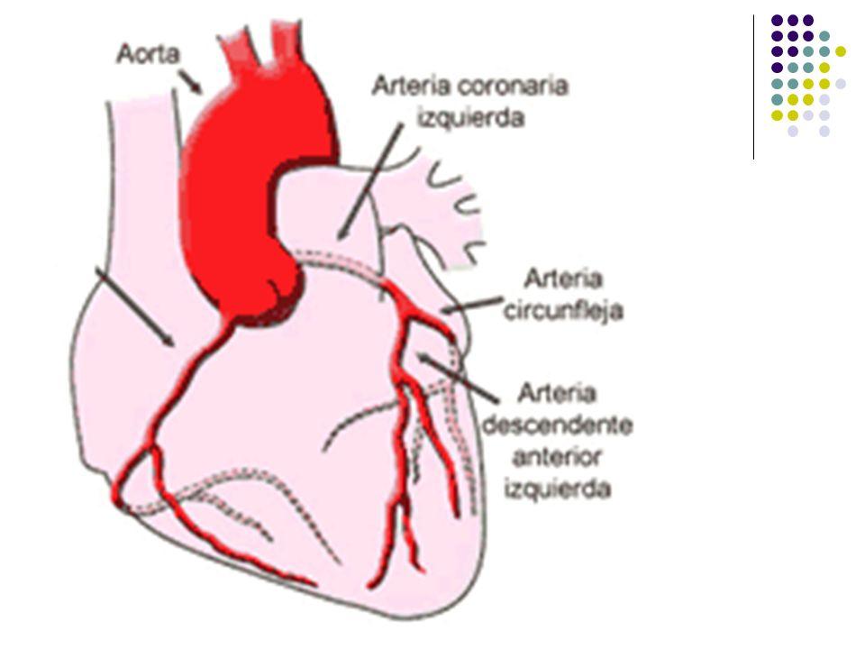 Manifestações Clínicas Dor torácica súbita e contínua, em região epigástrica (abaixo do esterno), podendo se irradiar para os braços, pescoço e costas.