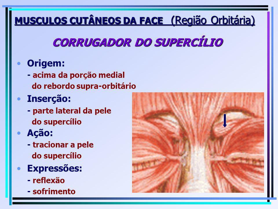 Origem: - acima da porção medial do rebordo supra-orbitário Inserção: - parte lateral da pele do supercílio MUSCULOS CUTÂNEOS DA FACE (Região Orbitári