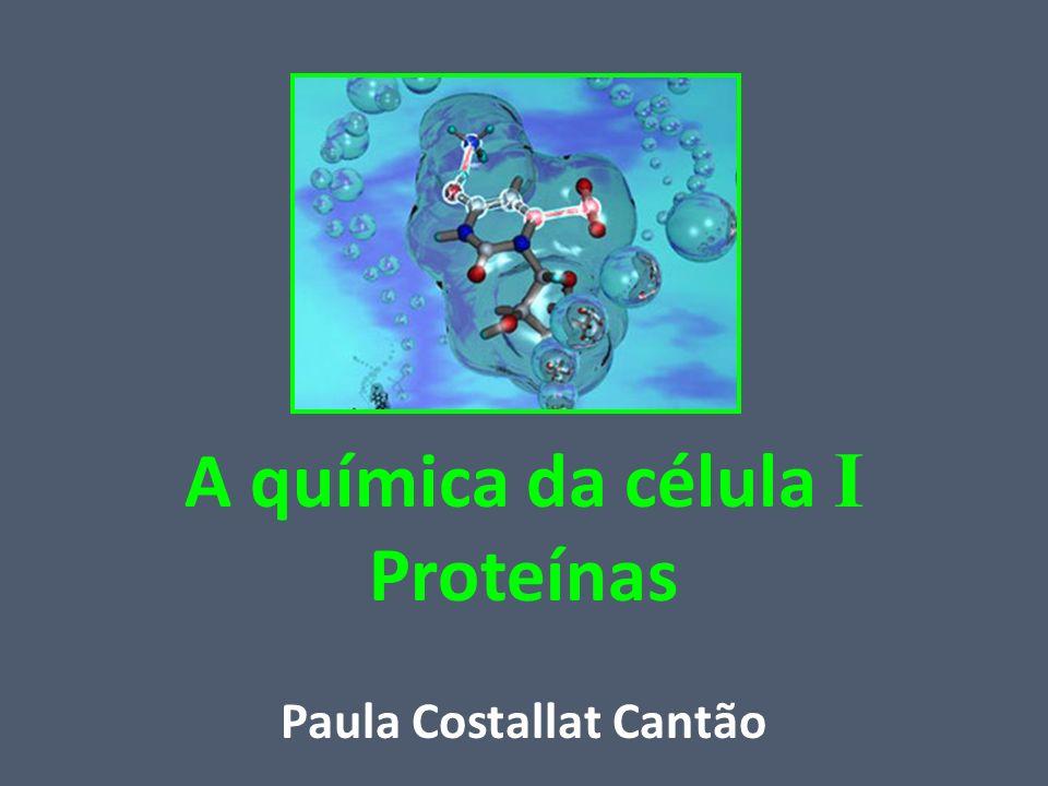 A química da célula I Proteínas Paula Costallat Cantão