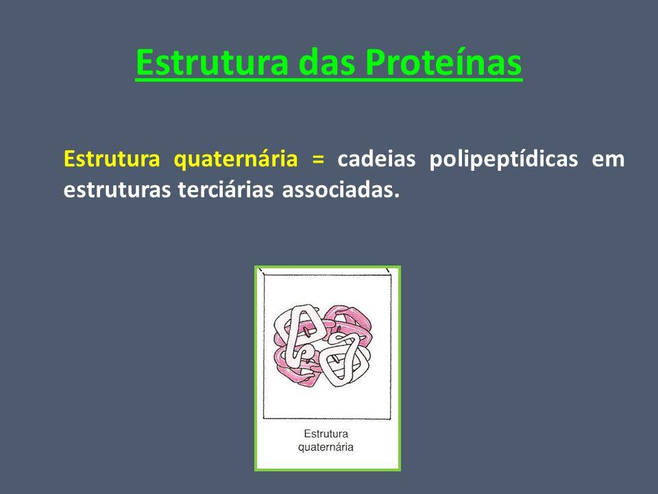 Estrutura das Proteínas Estrutura quaternária = cadeias polipeptídicas em estruturas terciárias associadas.