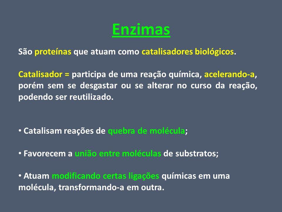 Enzimas São proteínas que atuam como catalisadores biológicos. Catalisador = participa de uma reação química, acelerando-a, porém sem se desgastar ou