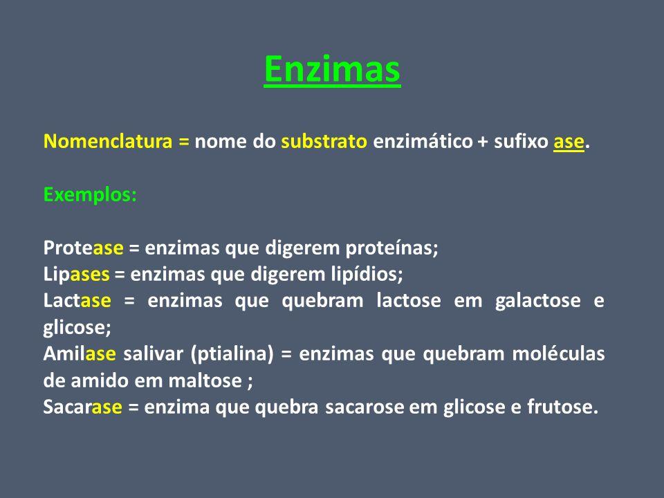 Enzimas Nomenclatura = nome do substrato enzimático + sufixo ase. Exemplos: Protease = enzimas que digerem proteínas; Lipases = enzimas que digerem li