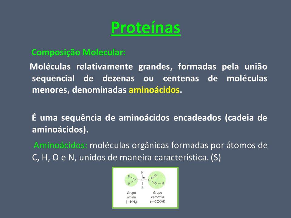 Proteínas Composição Molecular: Moléculas relativamente grandes, formadas pela união sequencial de dezenas ou centenas de moléculas menores, denominad