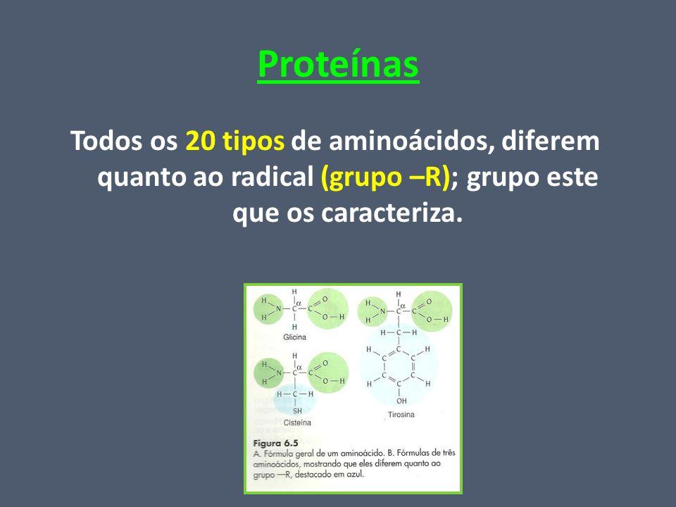 Proteínas Todos os 20 tipos de aminoácidos, diferem quanto ao radical (grupo –R); grupo este que os caracteriza.