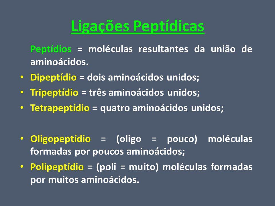Ligações Peptídicas Peptídios = moléculas resultantes da união de aminoácidos. Dipeptídio = dois aminoácidos unidos; Tripeptídio = três aminoácidos un
