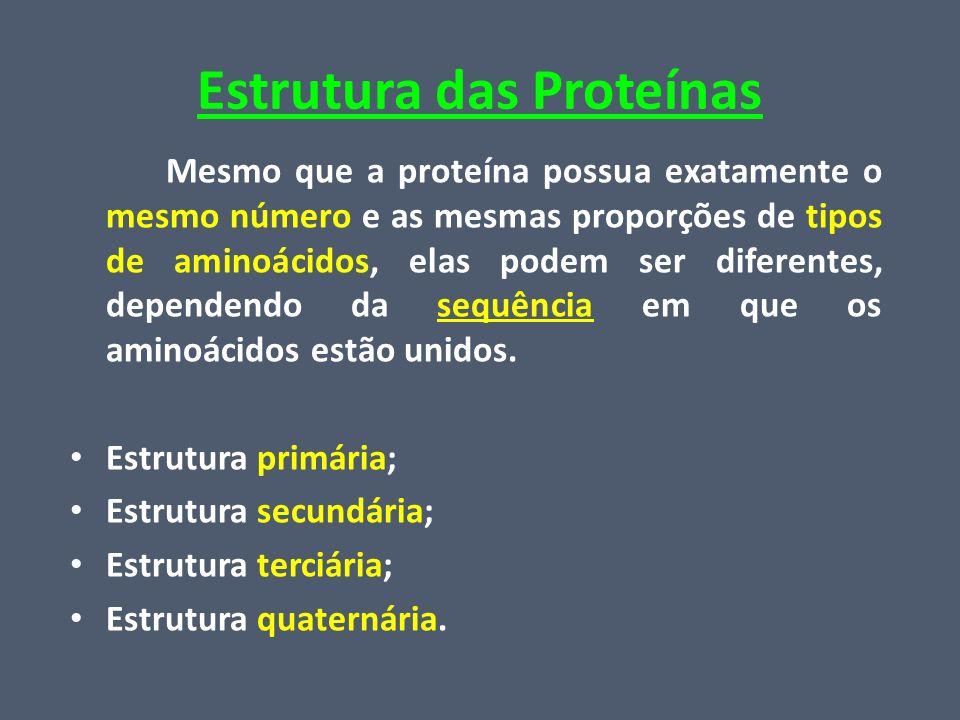 Estrutura das Proteínas Mesmo que a proteína possua exatamente o mesmo número e as mesmas proporções de tipos de aminoácidos, elas podem ser diferente