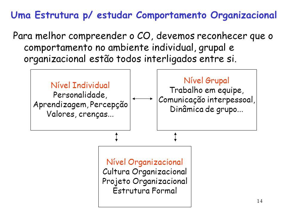 14 Uma Estrutura p/ estudar Comportamento Organizacional Para melhor compreender o CO, devemos reconhecer que o comportamento no ambiente individual,