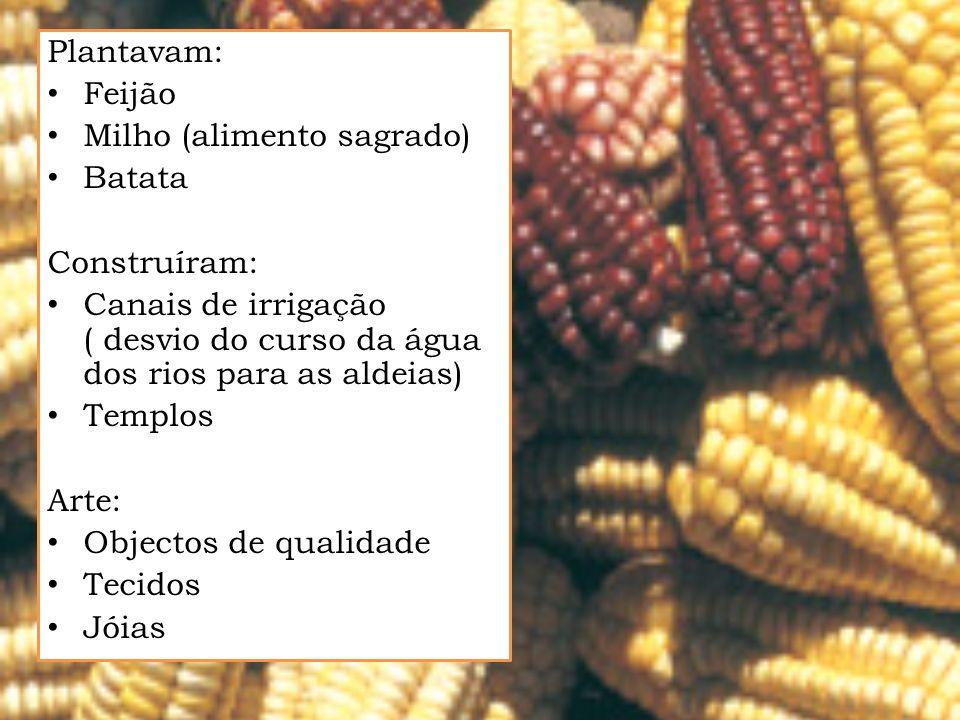 Plantavam: Feijão Milho (alimento sagrado) Batata Construíram: Canais de irrigação ( desvio do curso da água dos rios para as aldeias) Templos Arte: O