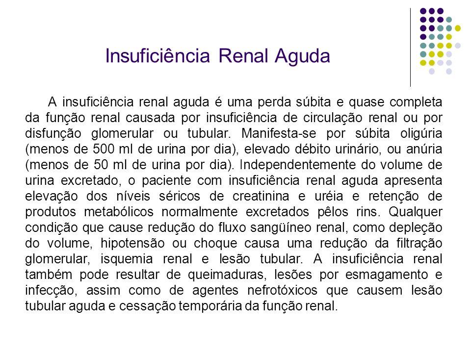 Insuficiência Renal Aguda A insuficiência renal aguda é uma perda súbita e quase completa da função renal causada por insuficiência de circulação rena