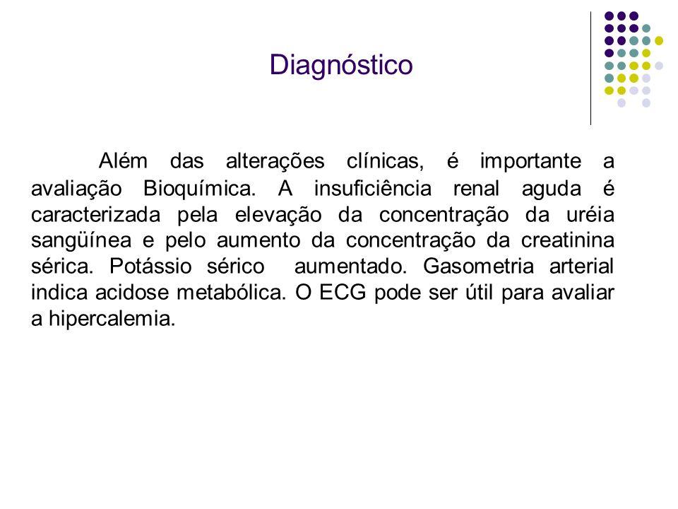 Diagnóstico Além das alterações clínicas, é importante a avaliação Bioquímica. A insuficiência renal aguda é caracterizada pela elevação da concentraç