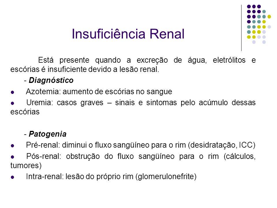Insuficiência Renal Está presente quando a excreção de água, eletrólitos e escórias é insuficiente devido a lesão renal. - Diagnóstico Azotemia: aumen