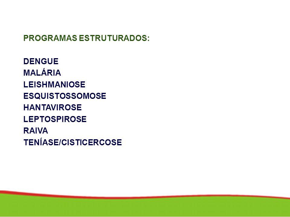 PROGRAMAS ESTRUTURADOS: DENGUE MALÁRIA LEISHMANIOSE ESQUISTOSSOMOSE HANTAVIROSE LEPTOSPIROSE RAIVA TENÍASE/CISTICERCOSE
