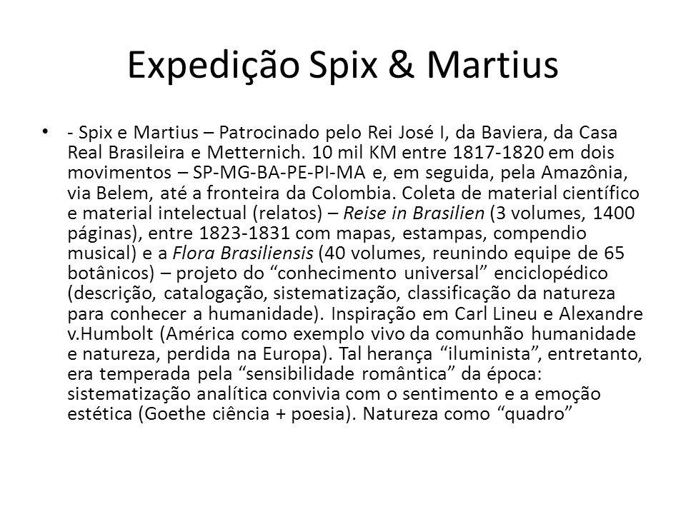 Expedição Spix & Martius - Spix e Martius – Patrocinado pelo Rei José I, da Baviera, da Casa Real Brasileira e Metternich. 10 mil KM entre 1817-1820 e