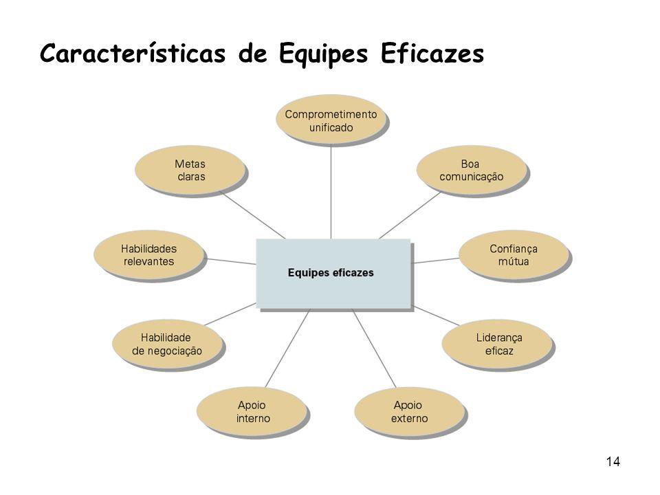 14 Características de Equipes Eficazes
