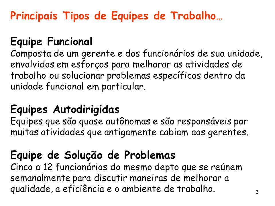 3 Principais Tipos de Equipes de Trabalho… Equipe Funcional Composta de um gerente e dos funcionários de sua unidade, envolvidos em esforços para melh