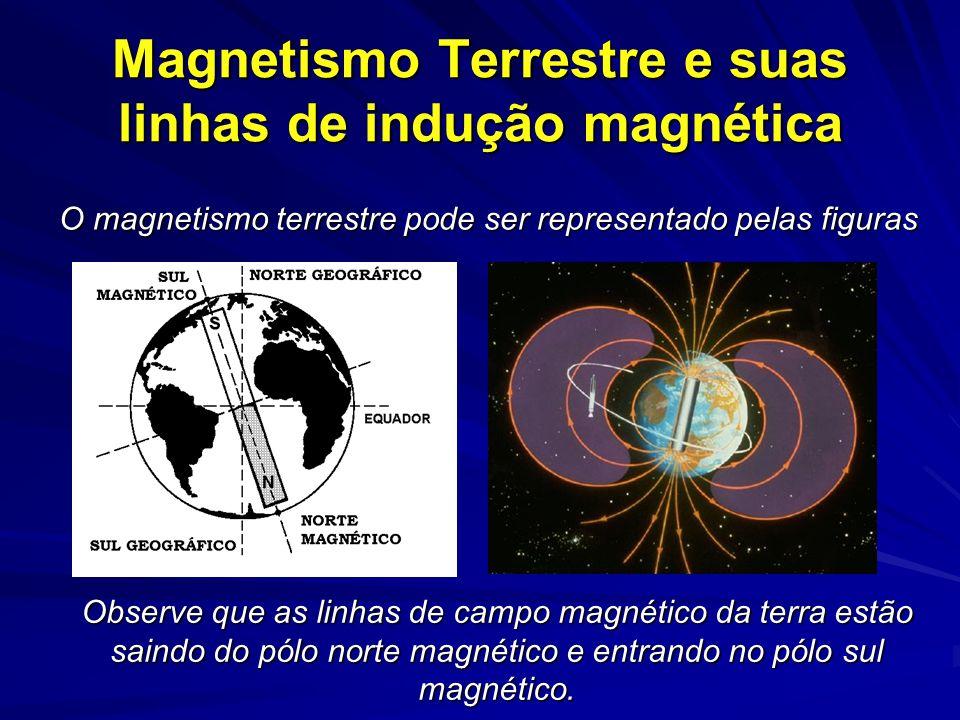 Magnetismo Terrestre e suas linhas de indução magnética O magnetismo terrestre pode ser representado pelas figuras Observe que as linhas de campo magnético da terra estão saindo do pólo norte magnético e entrando no pólo sul magnético.