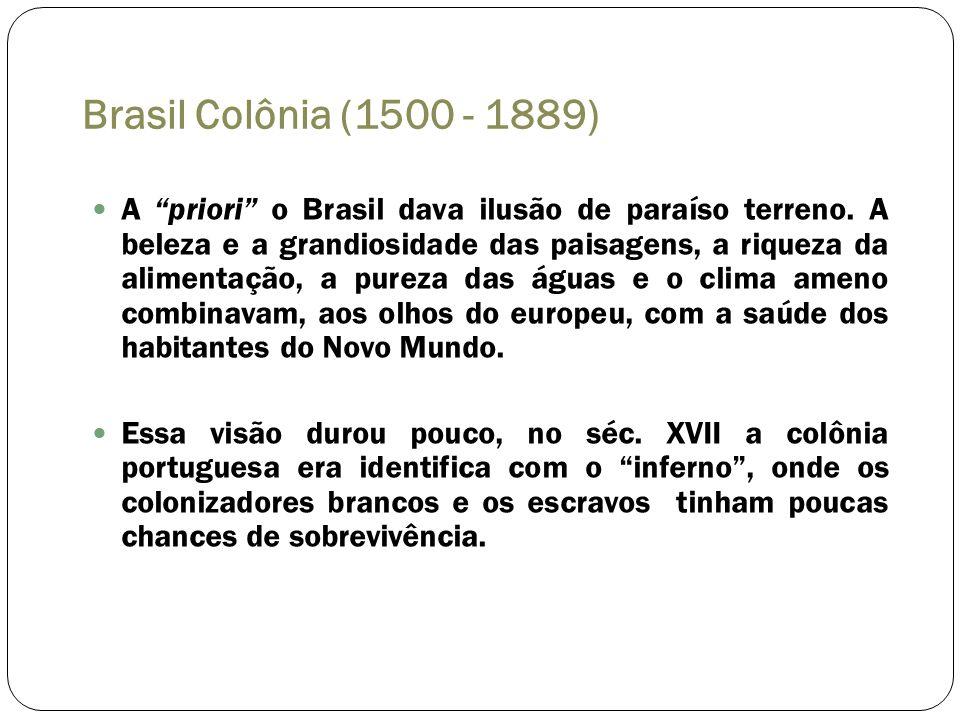Brasil Colônia (1500 - 1889) A priori o Brasil dava ilusão de paraíso terreno. A beleza e a grandiosidade das paisagens, a riqueza da alimentação, a p