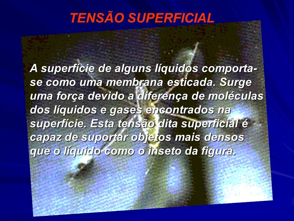 TENSÃO SUPERFICIAL A superfície de alguns líquidos comporta- se como uma membrana esticada. Surge uma força devido a diferença de moléculas dos líquid
