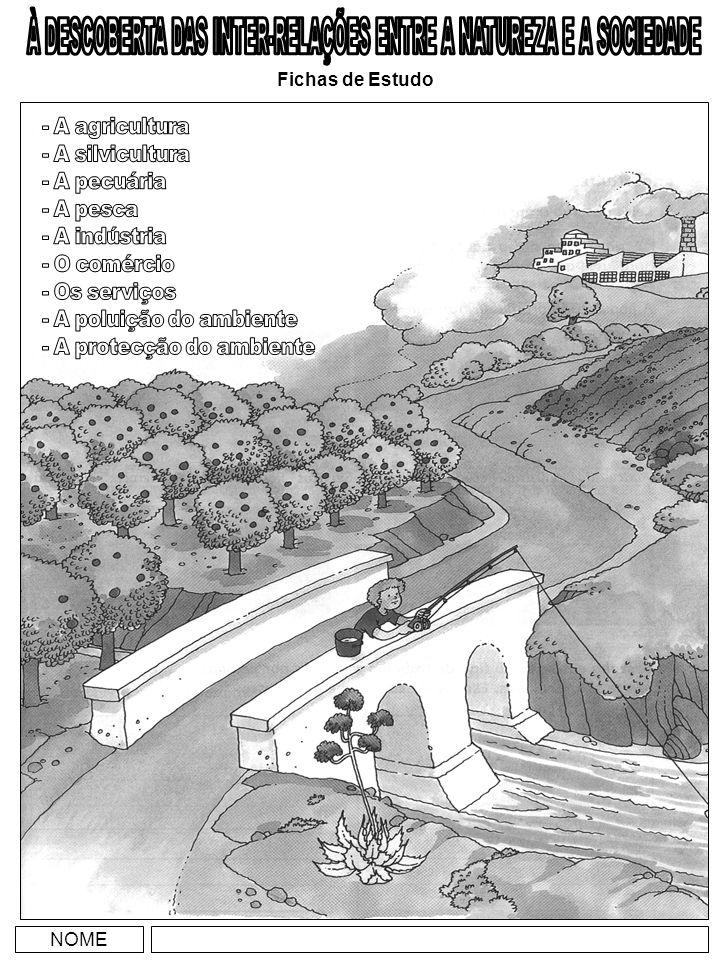 A AGRICULTURA Reconheço a agricultura como actividade económica importante em Portugal e identifico os principais produtos agrícolas portugueses.