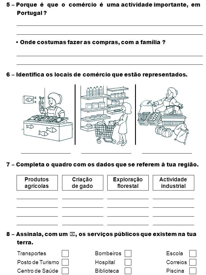 5 – Porque é que o comércio é uma actividade importante, em Portugal ? Onde costumas fazer as compras, com a família ? 6 – Identifica os locais de com