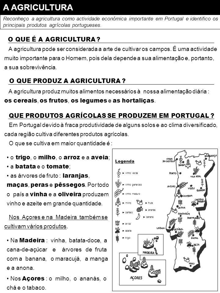 A AGRICULTURA Reconheço a agricultura como actividade económica importante em Portugal e identifico os principais produtos agrícolas portugueses. A ag