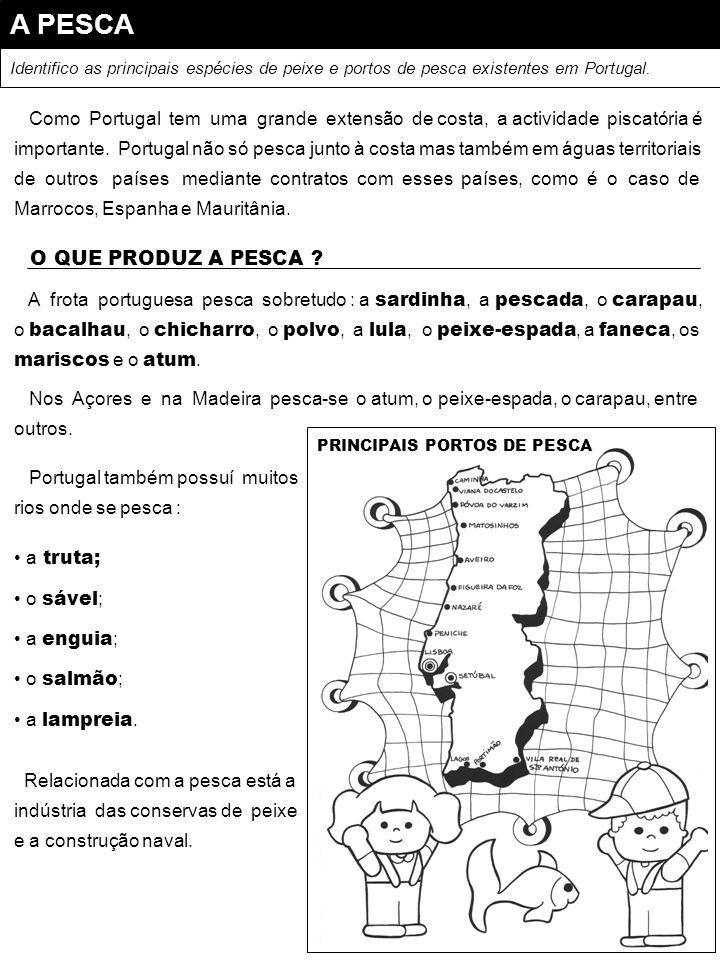 A PESCA Identifico as principais espécies de peixe e portos de pesca existentes em Portugal. Como Portugal tem uma grande extensão de costa, a activid