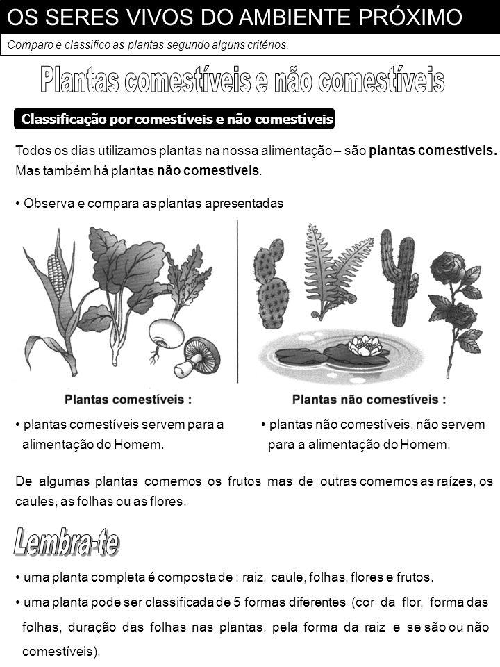 OS SERES VIVOS DO AMBIENTE PRÓXIMO Comparo e classifico as plantas segundo alguns critérios. Todos os dias utilizamos plantas na nossa alimentação – s