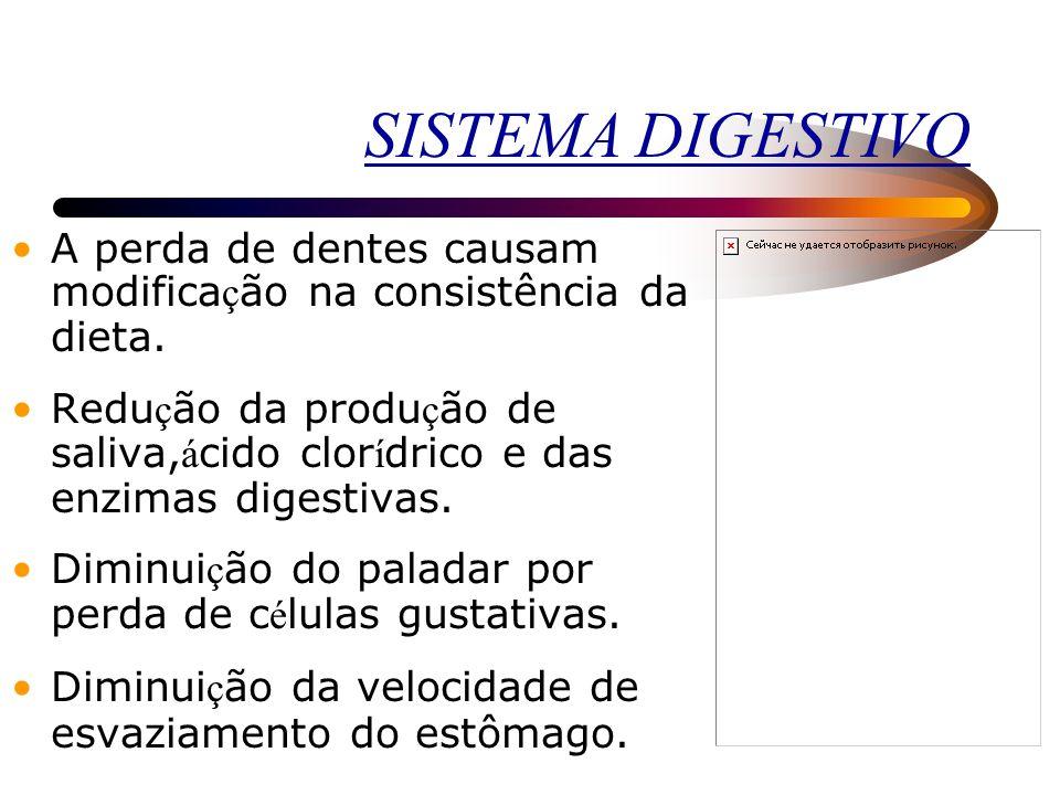 SISTEMA OSTEOMUSCULAR Ossos Perda de densidade ó ssea que pode levar à instala ç ão da osteoporose com perda de estatura e risco maior de fraturas. A